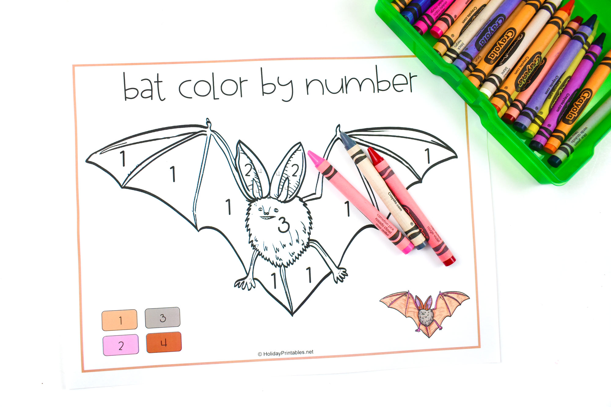 Bat Color by Number | HolidayPrintables.net